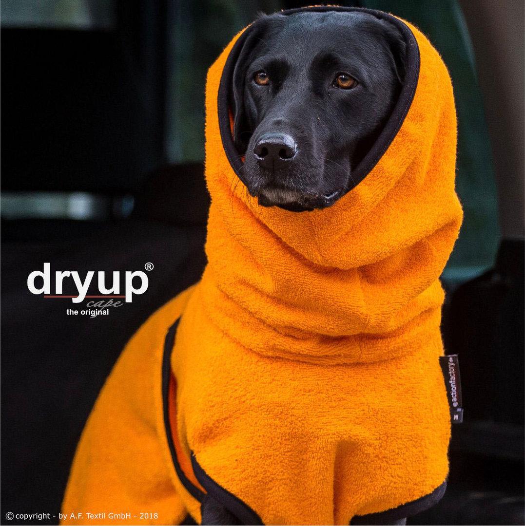 Dryup Cap orange